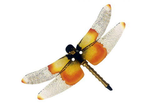 Flexinol Widow Skimmer Dragonfly