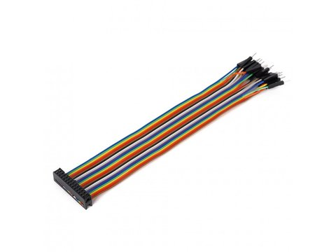 Mikroe Ribbon Cable 26-wire, Female IDC/Male, 20 cm