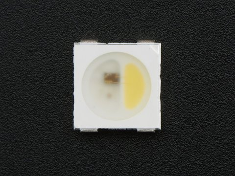NeoPixel RGBW LEDs w/ Integrated Driver Chip - Cool White - ~6000K - White Casing - 10 Pack